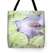 Frog And Lily Pads Tote Bag