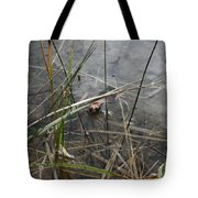 Frog Home Tote Bag