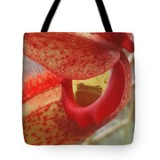 Frog In The Shade Tote Bag
