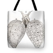 Frog Lungs, Malpighi, 1661 Tote Bag