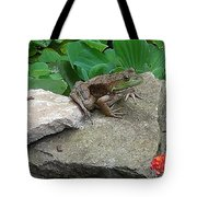 Frog On A Rock Tote Bag