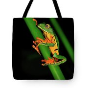 Frog Pole Vault  Tote Bag