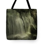 Frog Rock Tote Bag