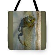 Frog Swim Tote Bag