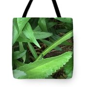 Frog Under Green Tote Bag