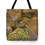 Froggy On A Hill Tote Bag