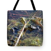 Froggy Pond Tote Bag