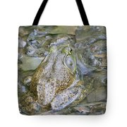 Frogs Eye View Tote Bag