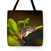Frogs Life Tote Bag