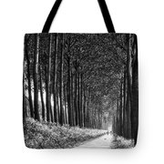 From Bruges To Dam Tote Bag