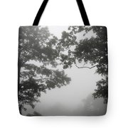 From Inside A Cloud Tote Bag