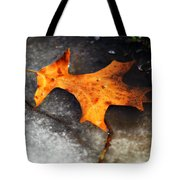From Last Fall Tote Bag