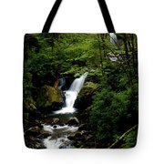 From Out Of The Smoky Mountains Tote Bag