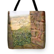 From The Castle Walls Tote Bag