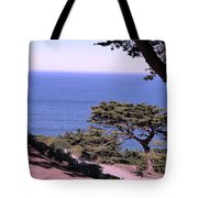 From The Cliff Of Lands' End 02 Tote Bag