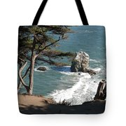 From The Cliff Of Lands' End Tote Bag