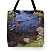 From The Mountains To The Sea Tote Bag