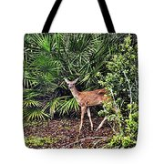 From The Palmetto Bushes Tote Bag by Jan Amiss Photography