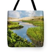 From The Sand Dunes To The Beach Tote Bag