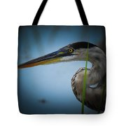 From The Series Great Blue Number 6 Tote Bag