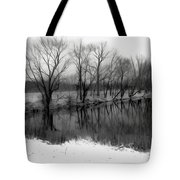 From The Wren Bridge Tote Bag