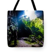 From Within-1 Tote Bag