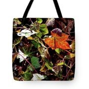 Front Gardens Tote Bag