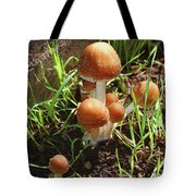Front Pourch Mushroom Family Tote Bag