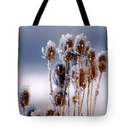 Frost In The Morning Tote Bag