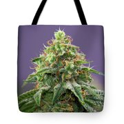 Frost Monster Tote Bag