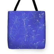 Frost On Car 1 Tote Bag by Roger Snyder