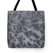 Frost On Car Window 6 Tote Bag by Roger Snyder
