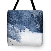 Frost Path Tote Bag