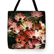 Frosted African Daisies Tote Bag
