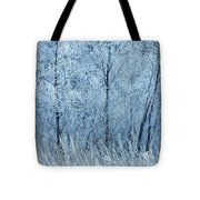 Frosted Beauty Tote Bag