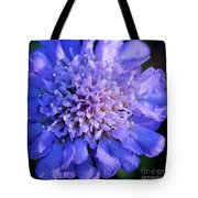 Frosted Blue Pincushion Flower Tote Bag