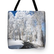 Frosted Cottonwoods Tote Bag