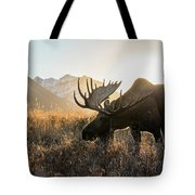Frosted Grass For Breakfast Tote Bag