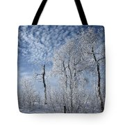 Frosted Hilltop Quakies Tote Bag