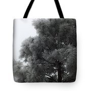 Frosted Pine Tote Bag