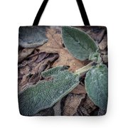 Frosty 2 Tote Bag