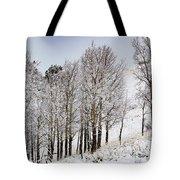 Frosty Aspen Trees Tote Bag