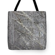 Frosty Birch Tree Tote Bag