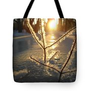 Frosty Branches At Sunrise Tote Bag