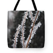 Frosty Branches Tote Bag by Carol Groenen