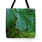 Frosty Dewdrops Tote Bag