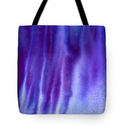 Frosty Evening Tote Bag