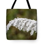 Frosty Frond Tote Bag