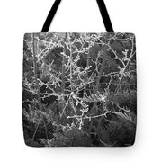 Frosty Morning # 3 Tote Bag