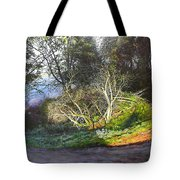 Frosty Morning Near Nant Clwyd, North Wales Tote Bag